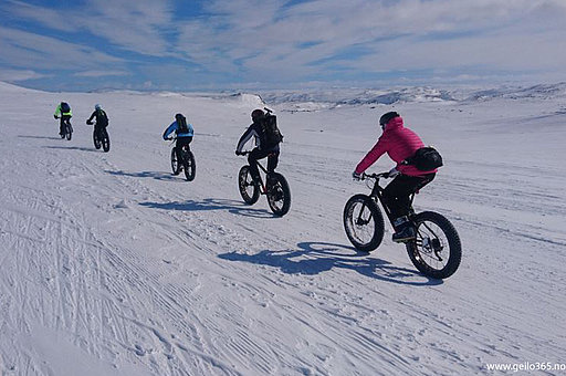 Holms Fatbike GUIDE