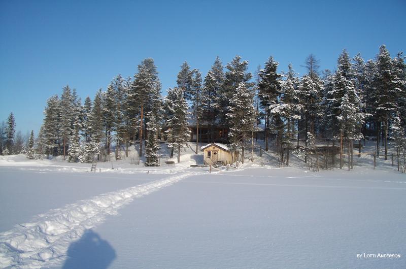 schweden urlaub im winter im schwedisch lappland. Black Bedroom Furniture Sets. Home Design Ideas