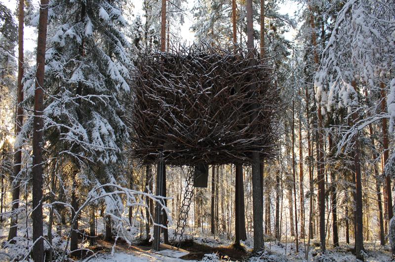 baumhaushotel schweden lappland winterurlaub im baumhaus hummel reiseideen. Black Bedroom Furniture Sets. Home Design Ideas